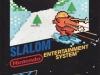 Slalom (NES)